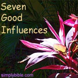 Seven Influences